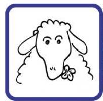 Logo firmy: BERÁNEK, spol. s r.o.