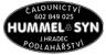 Logo firmy: Čalounictví a podlahářství Hummel & syn