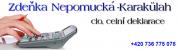 Logo firmy: Celní služby Neratovice