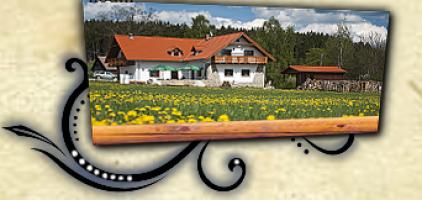 Logo firmy: Penzion -  Restaurace Na Výhledech