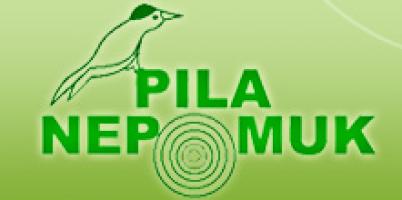 Logo firmy: Pila Nepomuk, s.r.o.