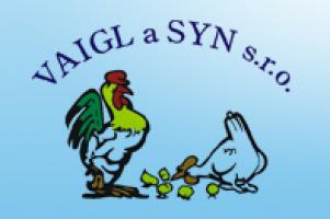 Logo firmy: VAIGL A SYN spol. s r.o.