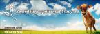 Logo firmy: Zemědělská společnost Slapy a.s.