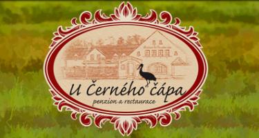 Logo firmy: Penzion U Černého čápa, Chaloupka U Černého čápa