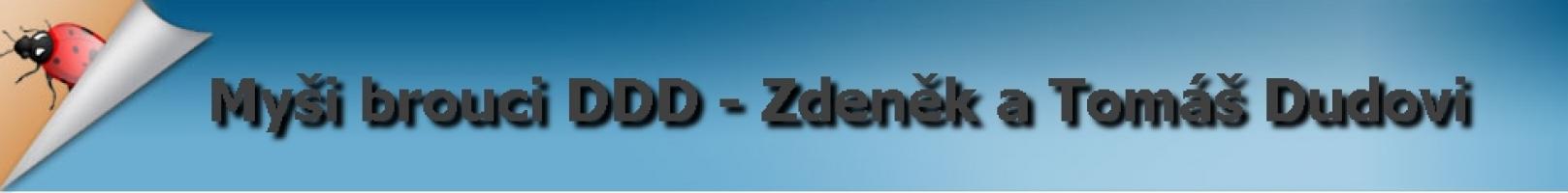 Logo firmy: DUDA služby DDD s.r.o.